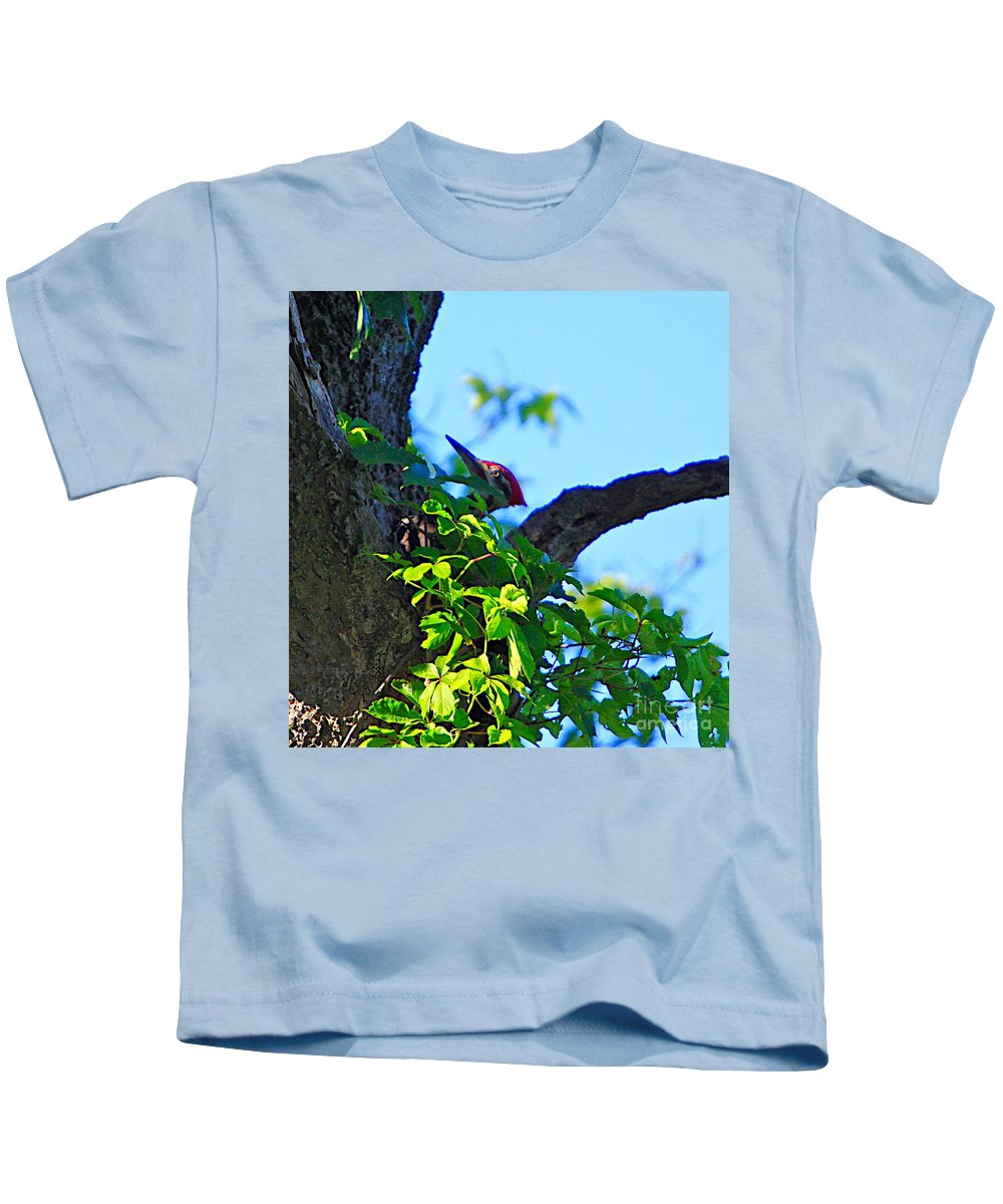 Pileated Kids T-Shirt featuring the photograph Pileated Woody Wood Pecker by Robert Pearson
