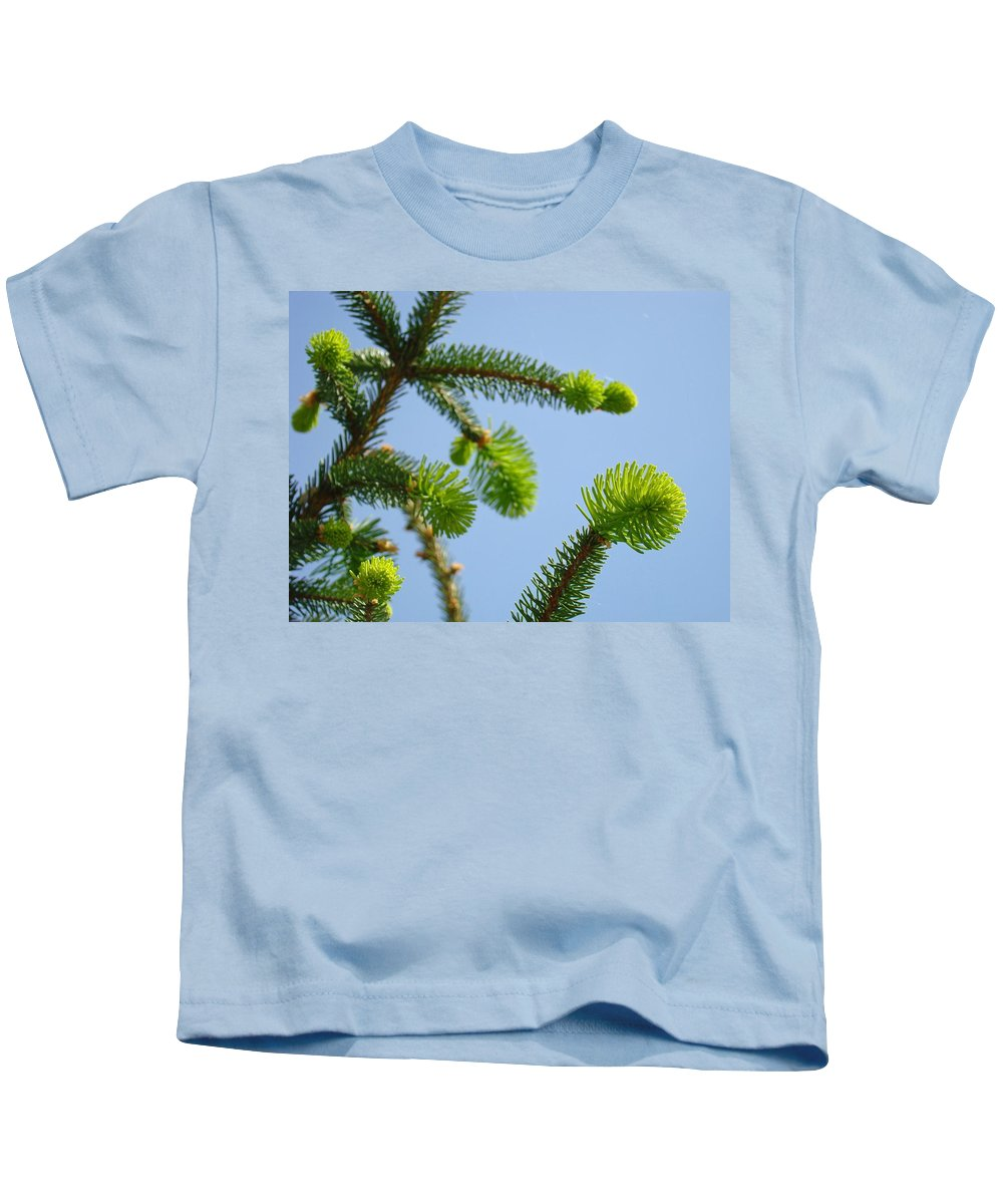 Pine Kids T-Shirt featuring the photograph Pine Tree Branches Art Prints Blue Sky Botanical Baslee Troutman by Baslee Troutman