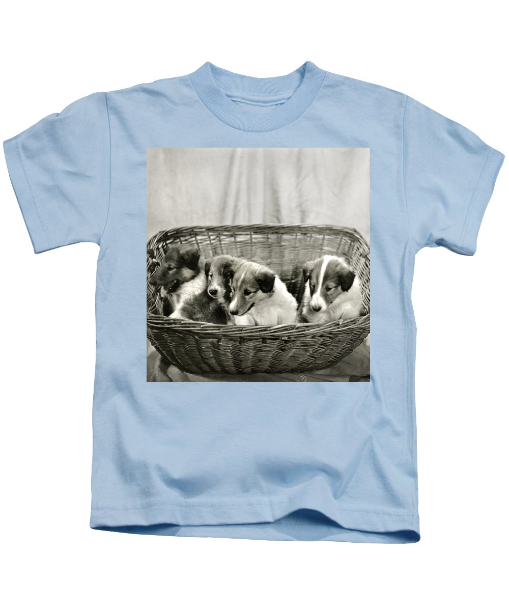 Vintage Kids T-Shirt featuring the photograph Puppies Of The Past by Marilyn Hunt