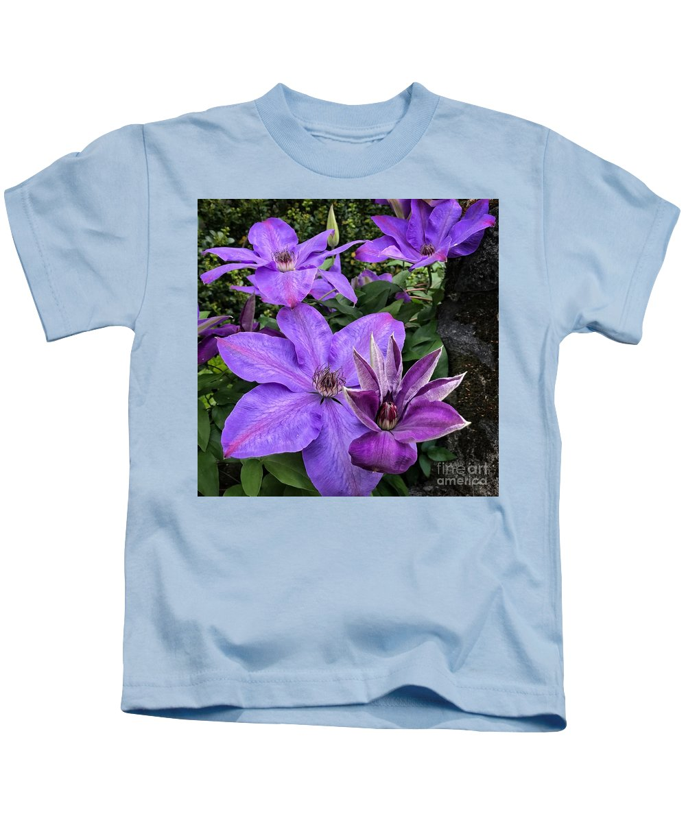 Purple Clematis Flowers Kids T-Shirt featuring the photograph Purple Clematis by Jane Maurer