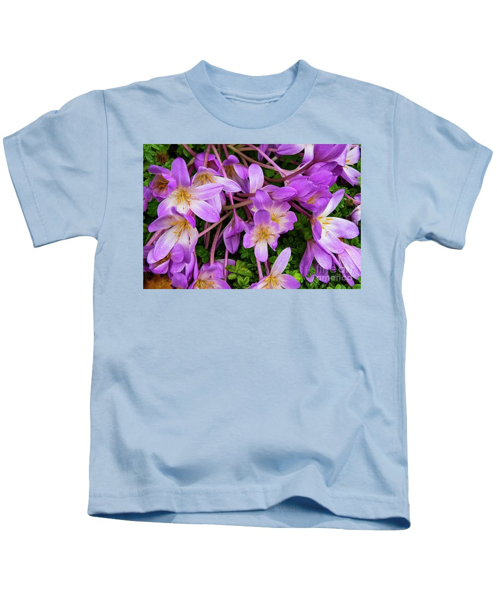 Cawdor Castle Kids T-Shirt featuring the photograph Purple Rain Lilies by Bob Phillips