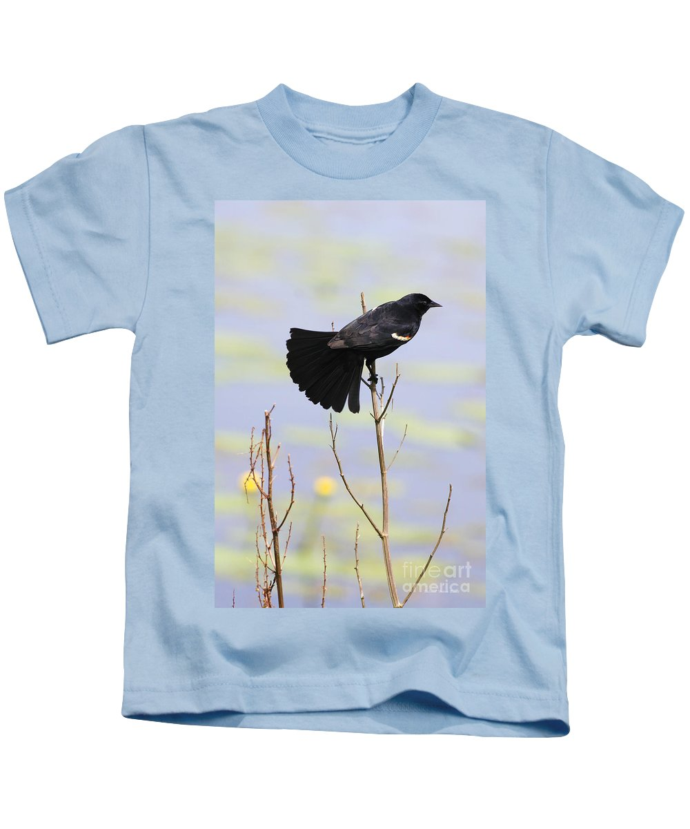 Bird Kids T-Shirt featuring the photograph Red On Blue by Deborah Benoit