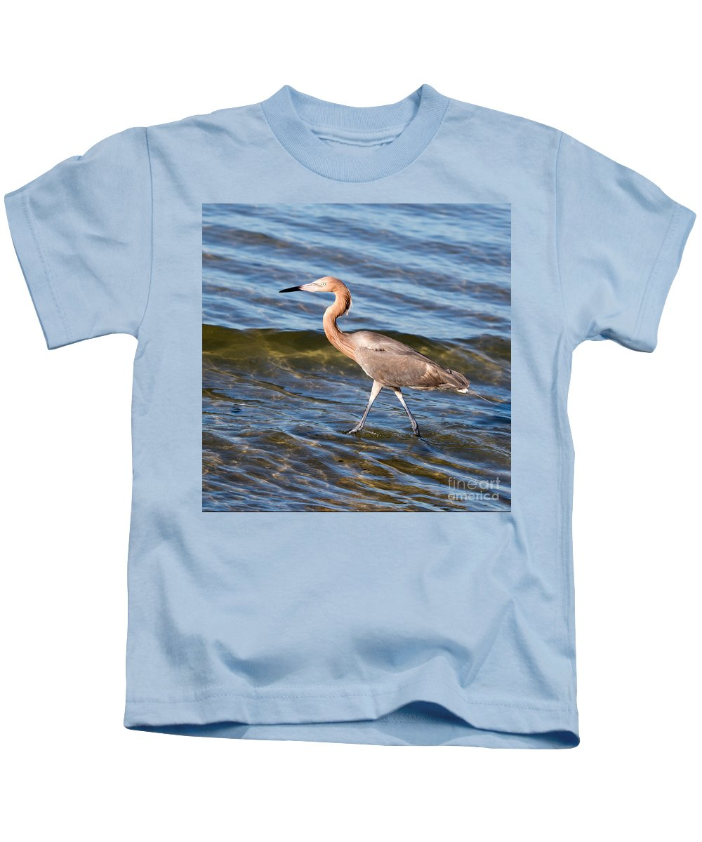 Egret Kids T-Shirt featuring the photograph Reddish Egret Wild 2 By Darrell Hutto by J Darrell Hutto
