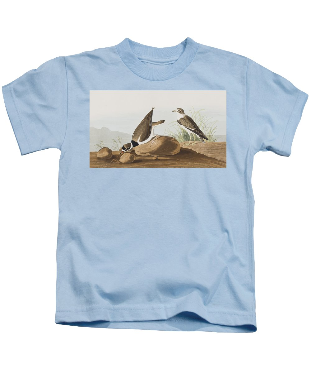 Plover Kids T-Shirt featuring the painting Ring Plover by John James Audubon