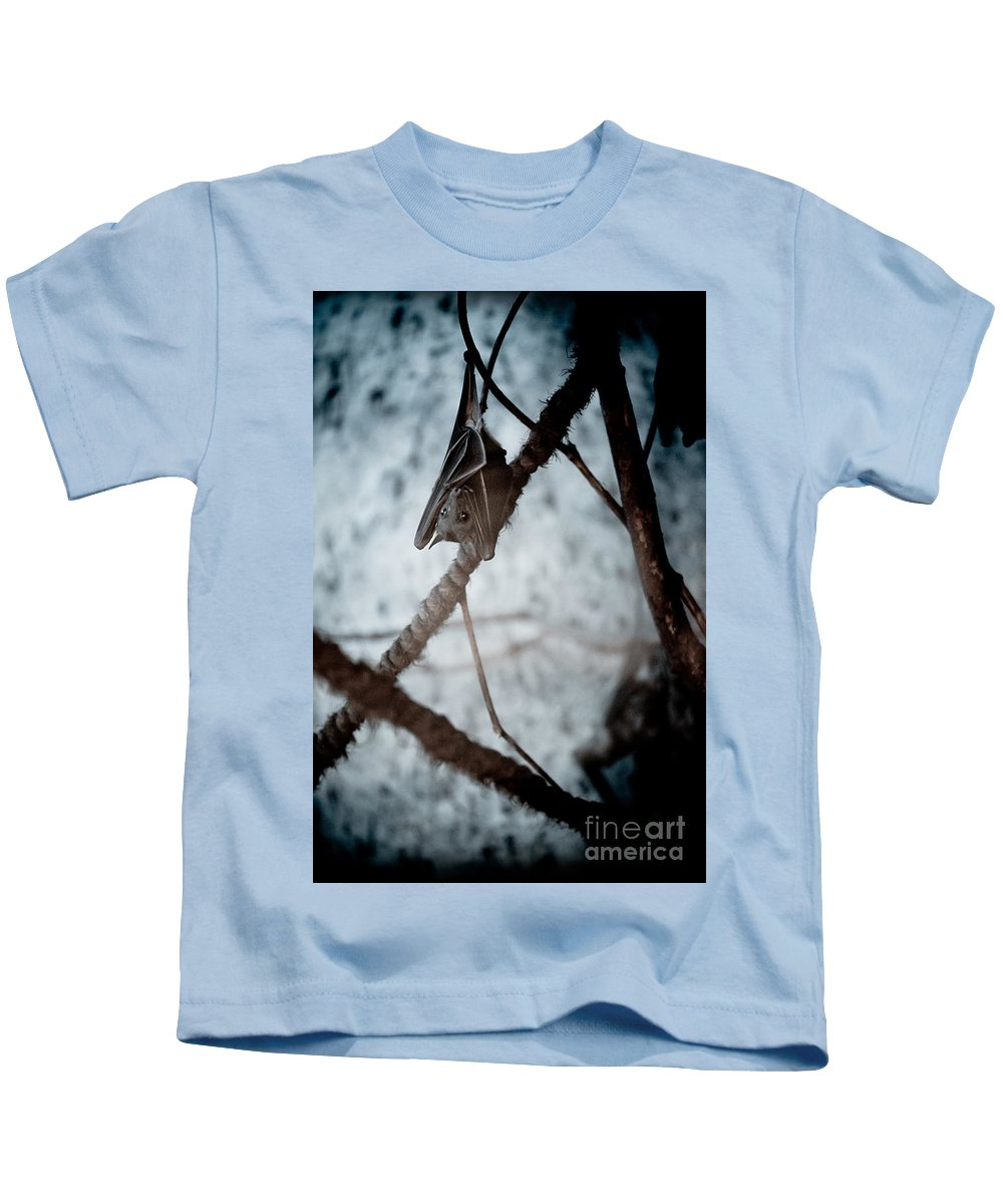 Animal Kids T-Shirt featuring the photograph Single Bat Hanging Alone by Arletta Cwalina