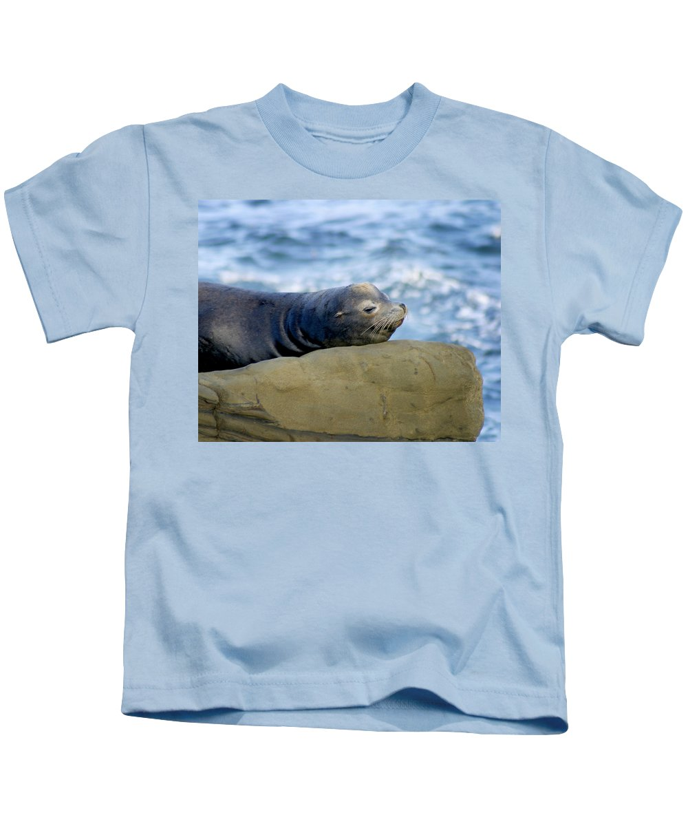 Seal Lion Kids T-Shirt featuring the photograph Sleeping Sea Lion by Anthony Jones