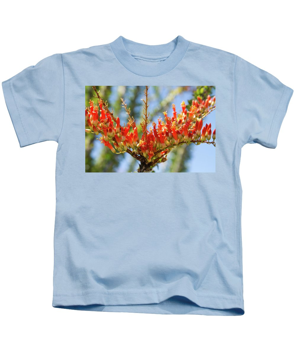 Southwest Kids T-Shirt featuring the photograph Southwest Ocotillo Bloom by James BO Insogna