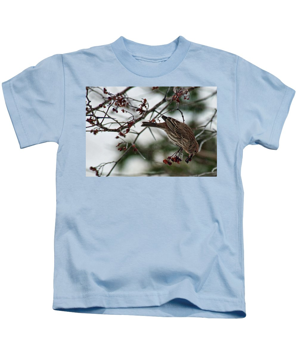 Bird Kids T-Shirt featuring the photograph Sparrow Eating Berry by David Arment