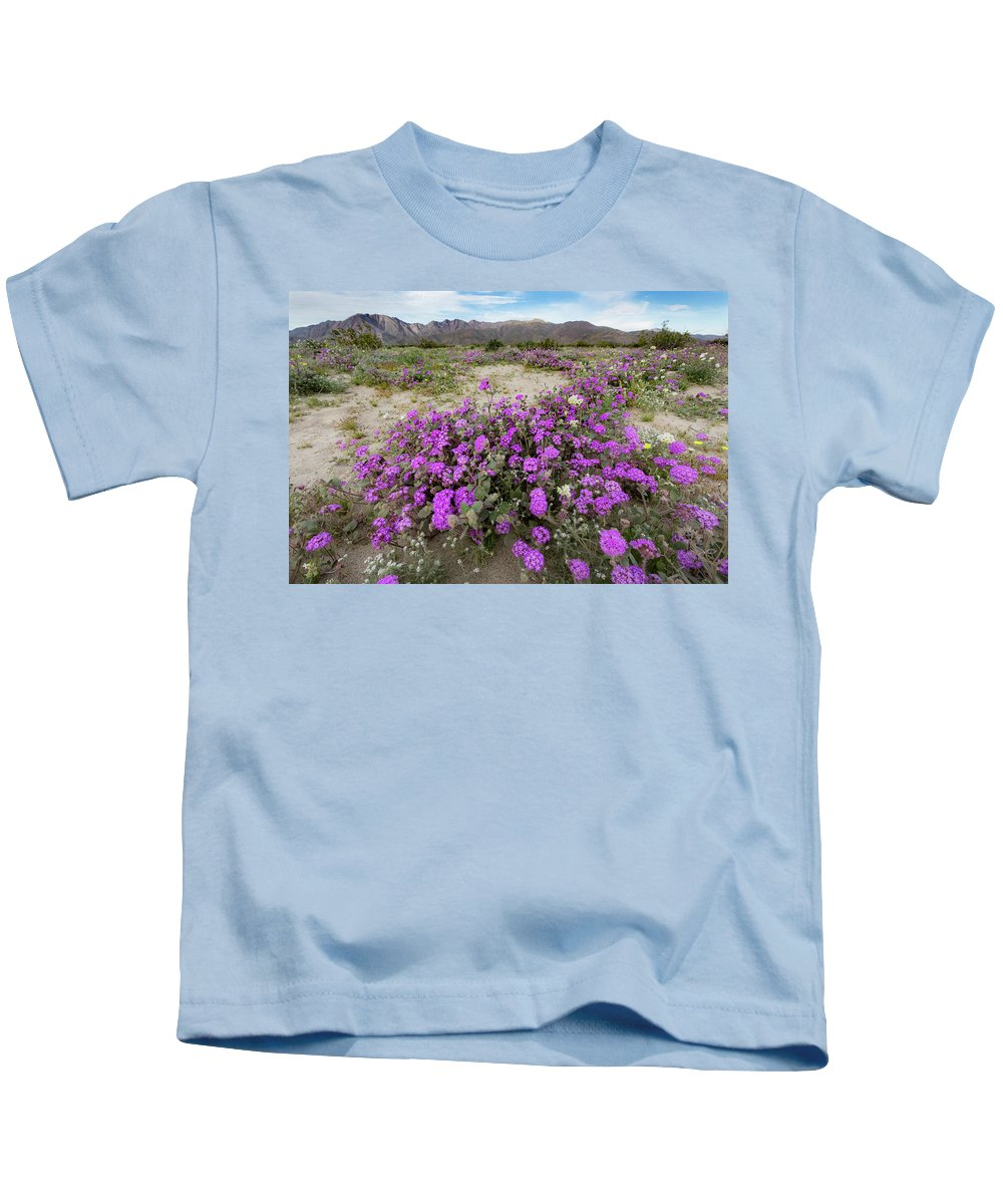 Spring Kids T-Shirt featuring the photograph Spring In Anza by Susan Degginger