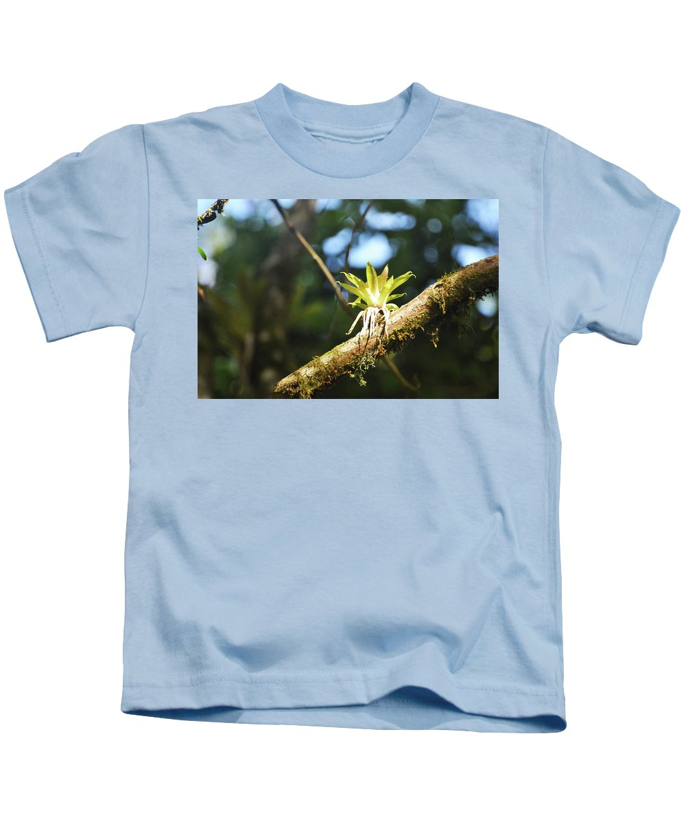 Bromeliad Kids T-Shirt featuring the photograph Standing Alone by Wes Hanson