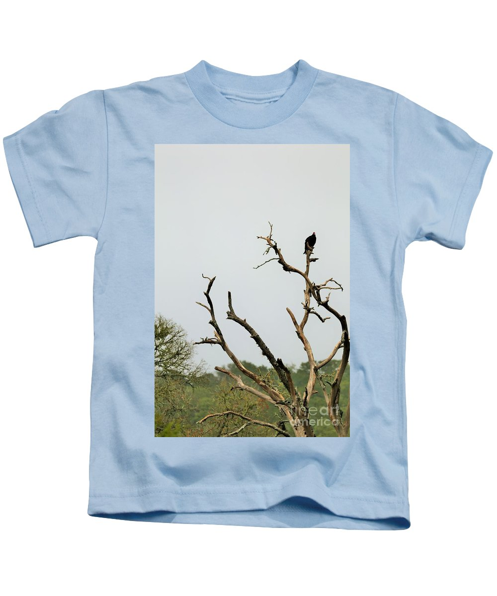 Kids T-Shirt featuring the photograph Trees 017 by Jeff Downs