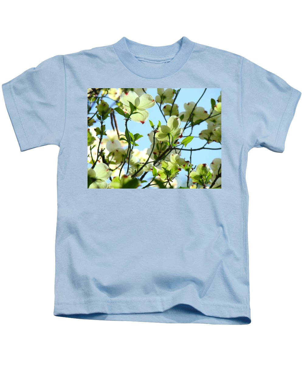 Dogwood Kids T-Shirt featuring the photograph Trees White Dogwood Flowers 9 Blue Sky Landscape Art Prints by Baslee Troutman