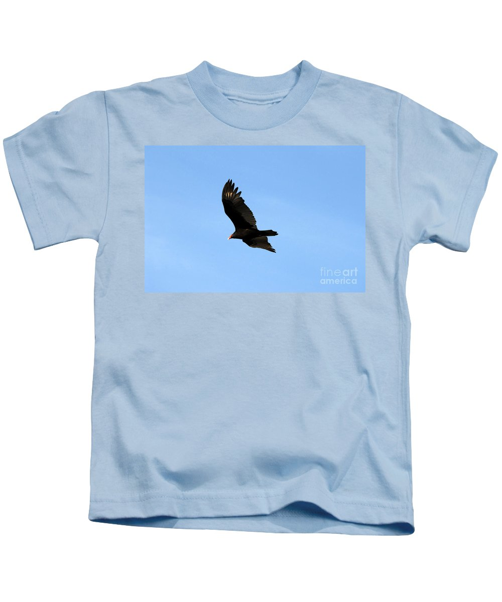 Turkey Vulture Kids T-Shirt featuring the photograph Turkey Vulture by David Lee Thompson