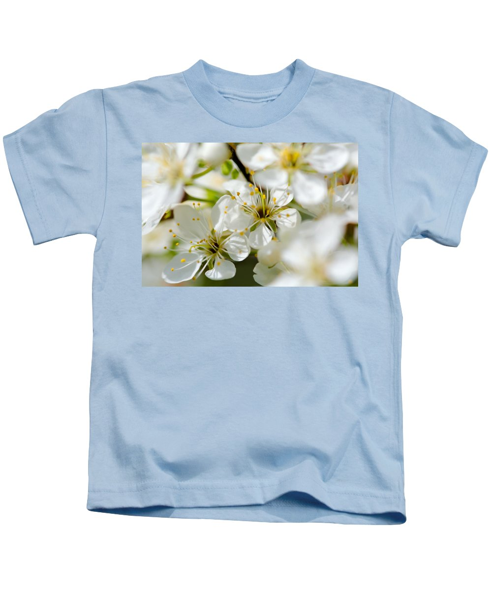 Blossoms Kids T-Shirt featuring the photograph Vermont Apple Blossoms by Sherman Perry