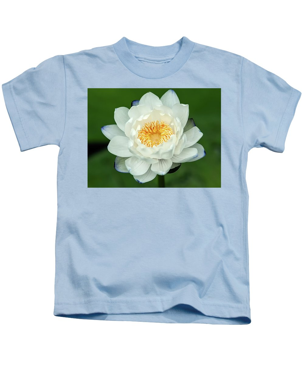 Blossom Kids T-Shirt featuring the photograph Water Lily In Bloom by Michael L Bell