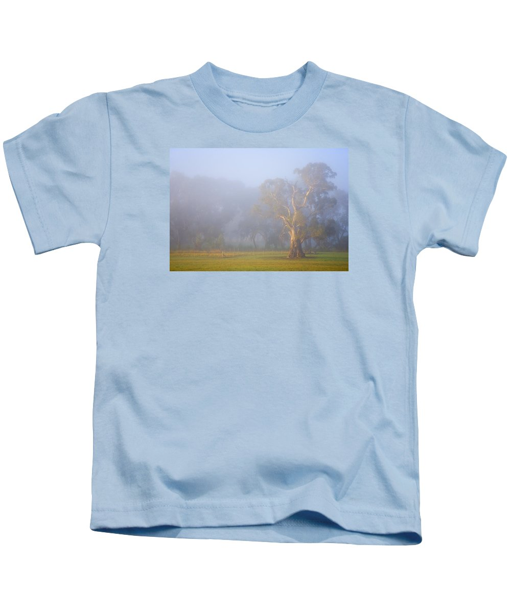 Tree Kids T-Shirt featuring the photograph White Gum Morning by Mike Dawson