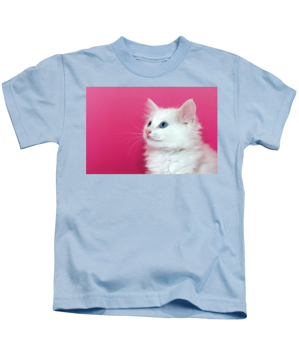Adorable Kids T-Shirt featuring the photograph White Kitten On Pink by Sheila Fitzgerald