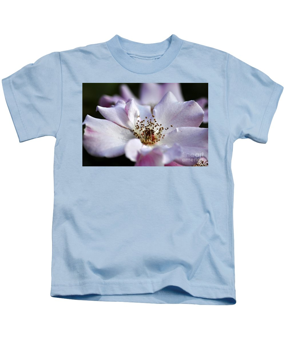 Clay Kids T-Shirt featuring the photograph White Rose by Clayton Bruster