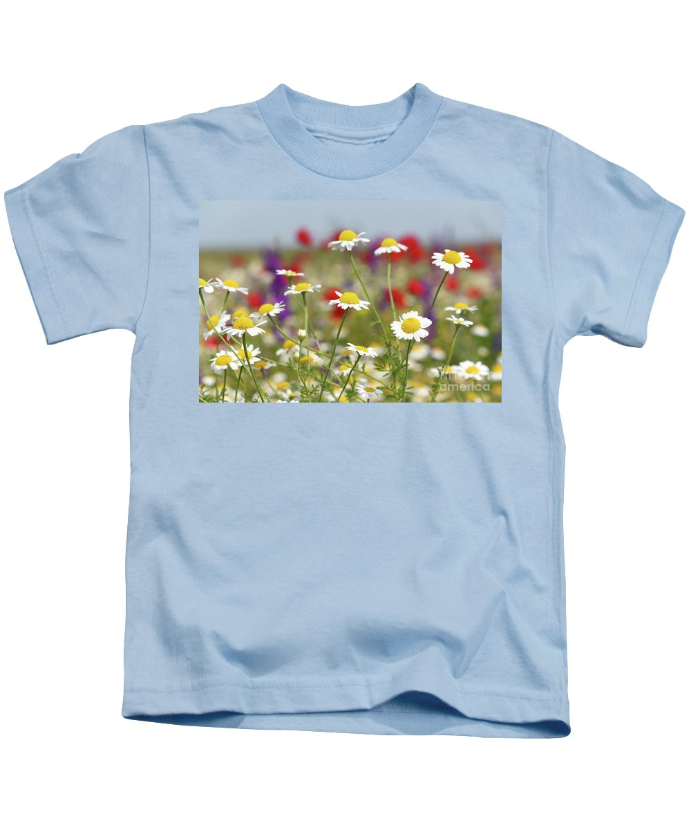 Camomile Kids T-Shirt featuring the photograph Wild Flowers Field Nature Spring Scene by Goce Risteski