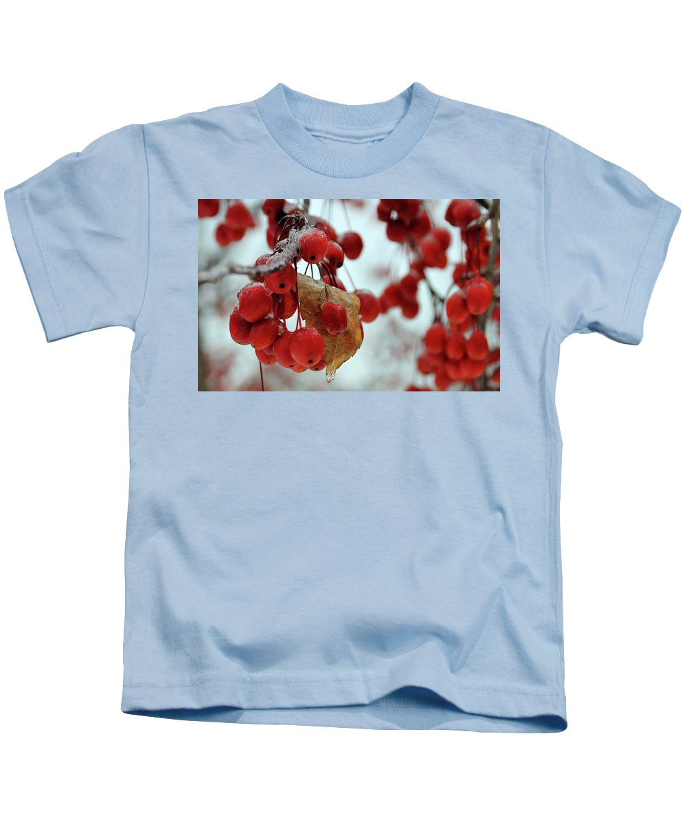 Winter Kids T-Shirt featuring the photograph Winter Berries by David Arment