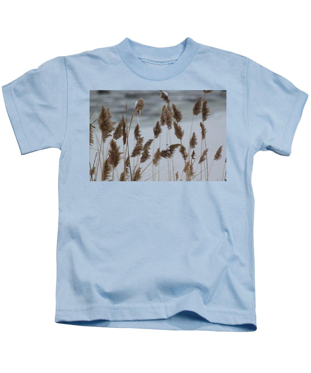 Winter Kids T-Shirt featuring the photograph Winter Weeds by Lauri Novak