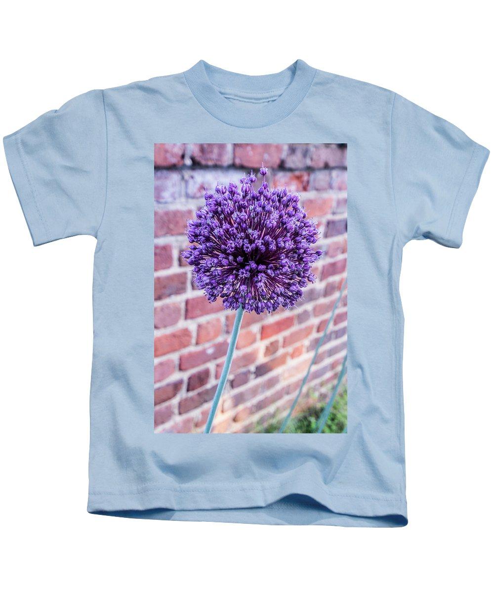 Allium Kids T-Shirt featuring the photograph Yorktown Onion Bloom by Nancy Comley