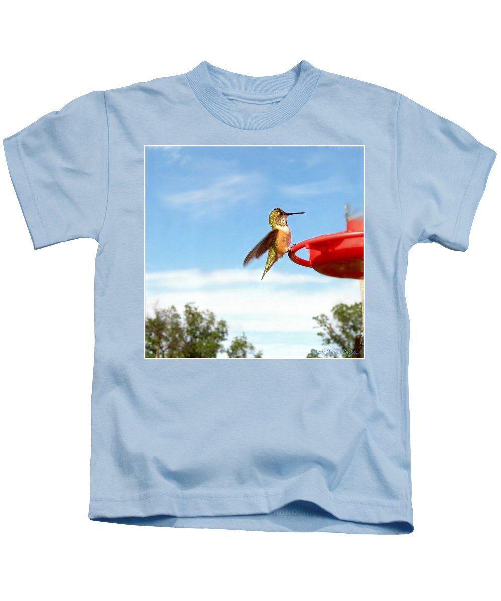 Hummingbird Kids T-Shirt featuring the photograph Young Rufous by Joyce Dickens