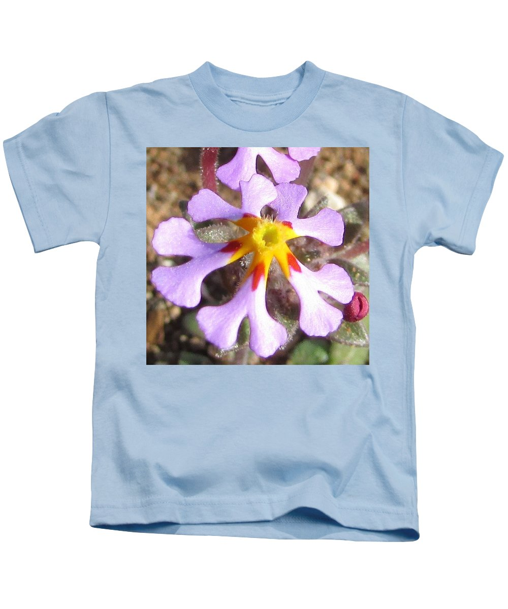 Flowers Kids T-Shirt featuring the photograph Zaluzianskya by Gareth Coombs