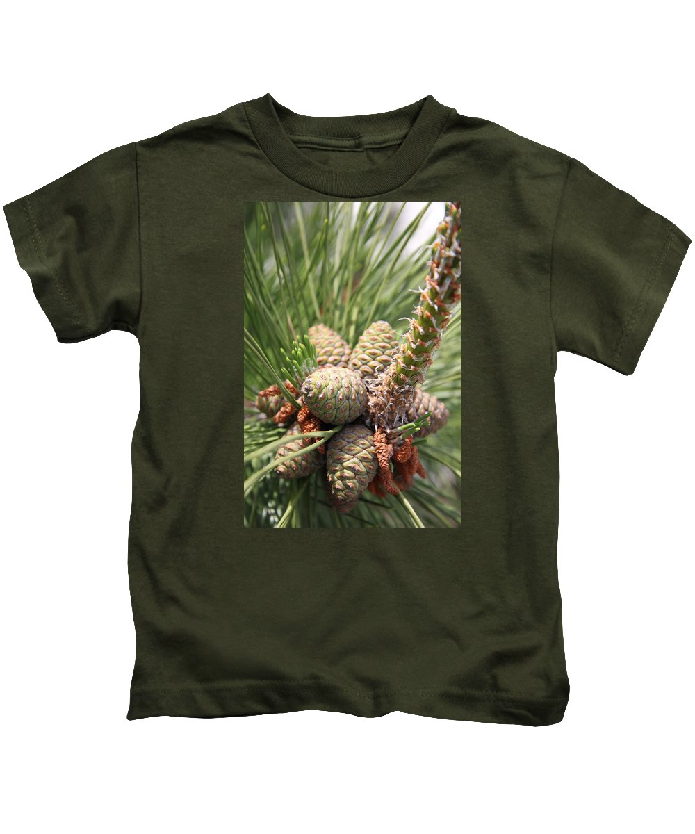Pine Kids T-Shirt featuring the photograph Pine Cones by Christiane Schulze Art And Photography