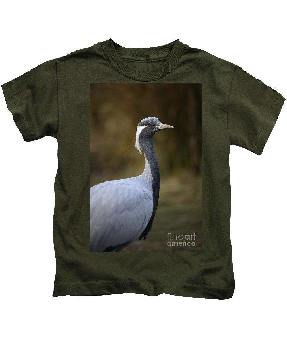 Captive Bird Kids T-Shirt featuring the photograph Bird by Jenny Potter