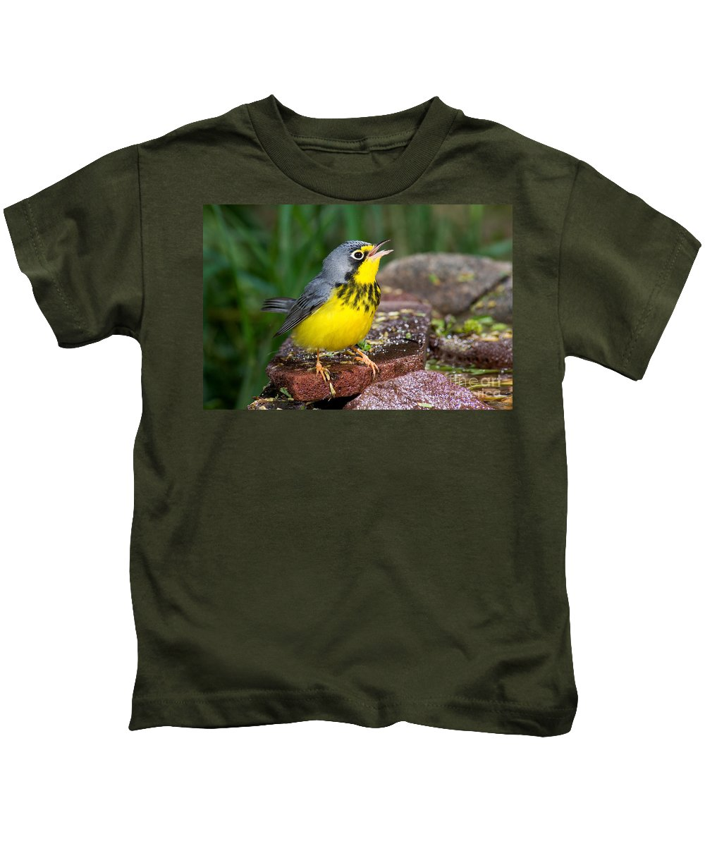 Canada Warbler Kids T-Shirt featuring the photograph Canada Warbler by Anthony Mercieca