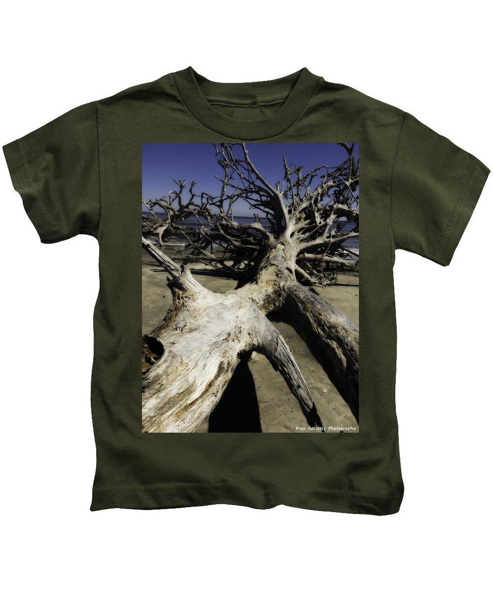 Georgia Kids T-Shirt featuring the photograph Driftwood by Fran Gallogly