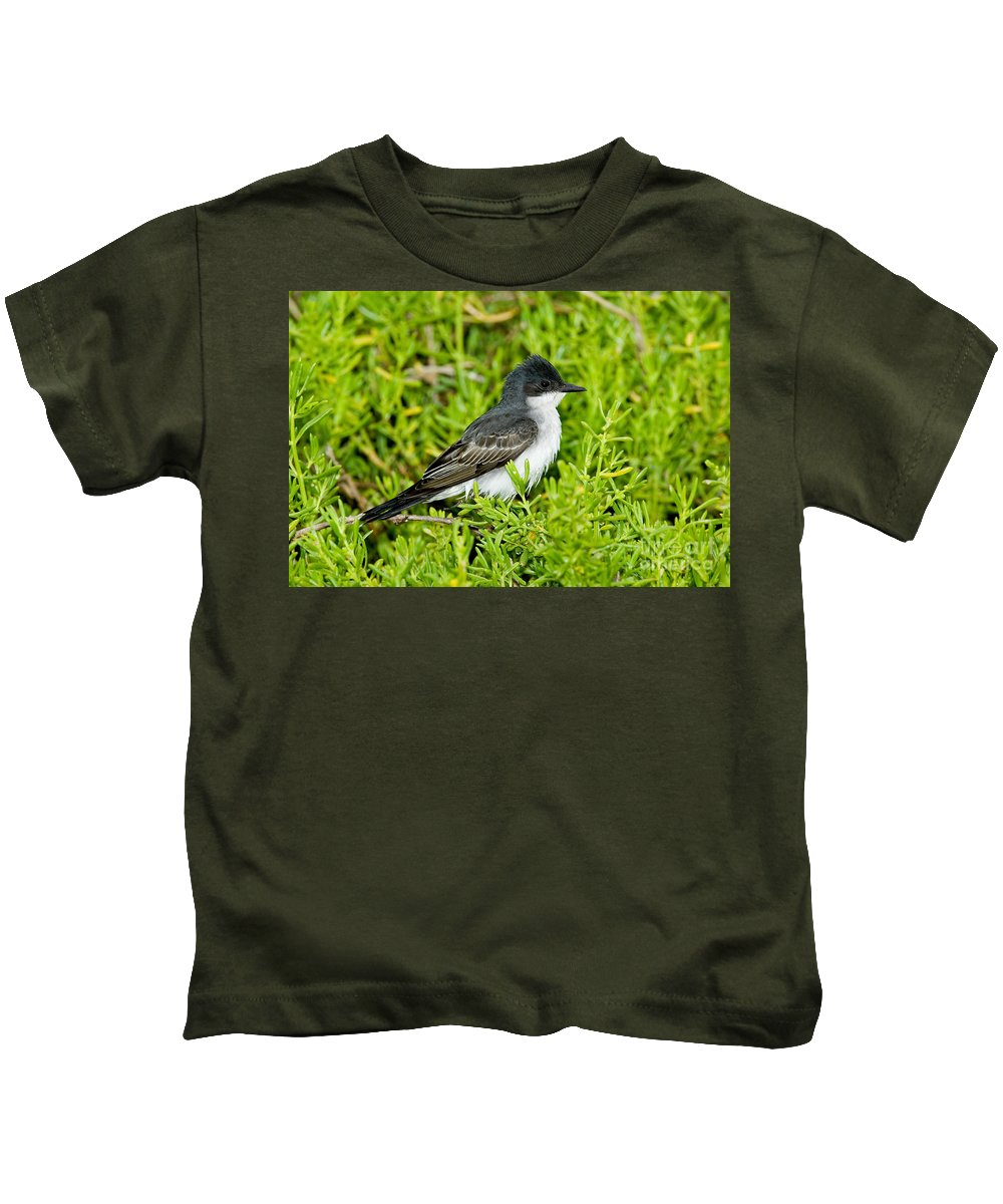 Animal Kids T-Shirt featuring the photograph Eastern Kingbird by Anthony Mercieca