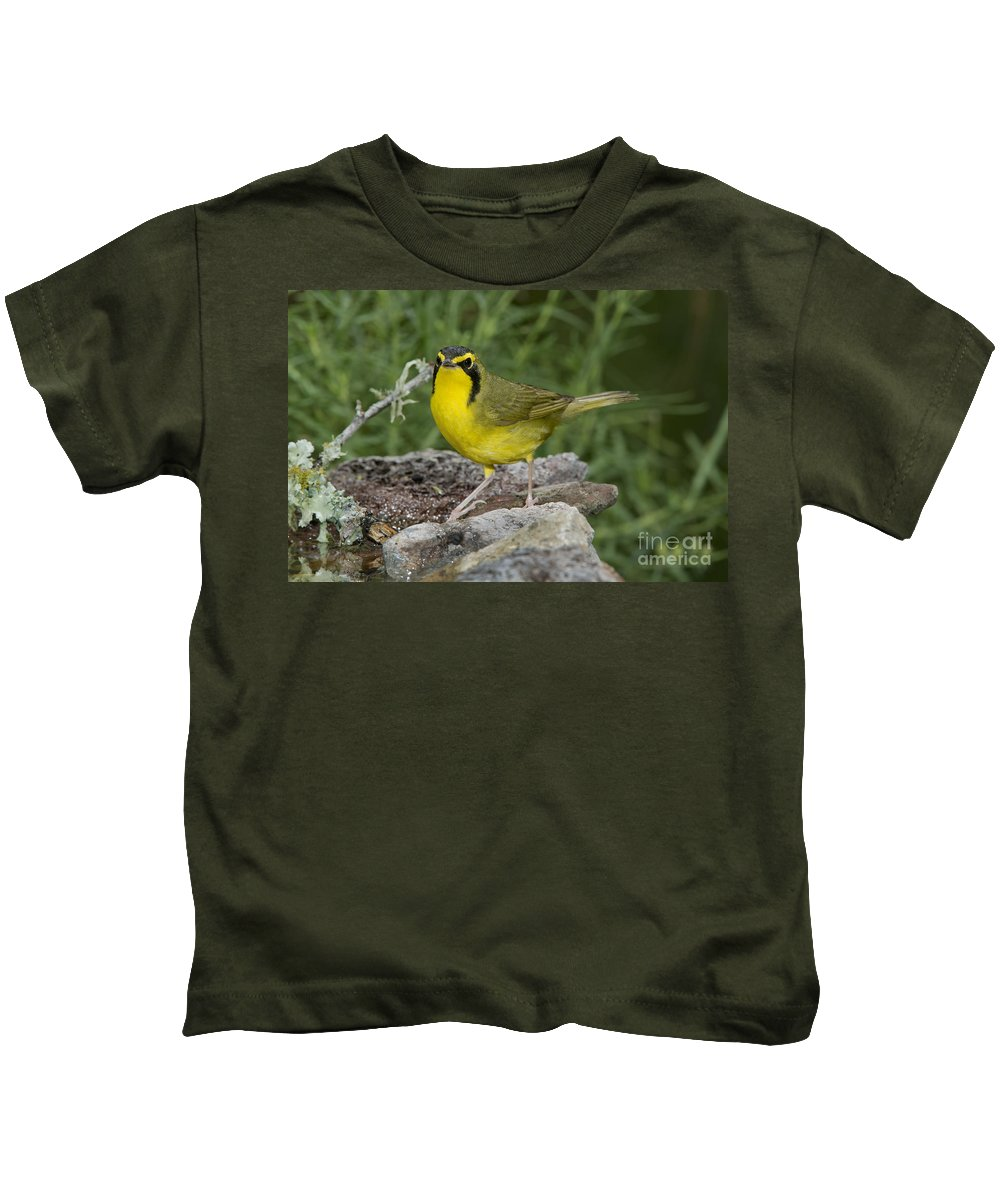 Kentucky Warbler Kids T-Shirt featuring the photograph Kentucky Warbler by Anthony Mercieca