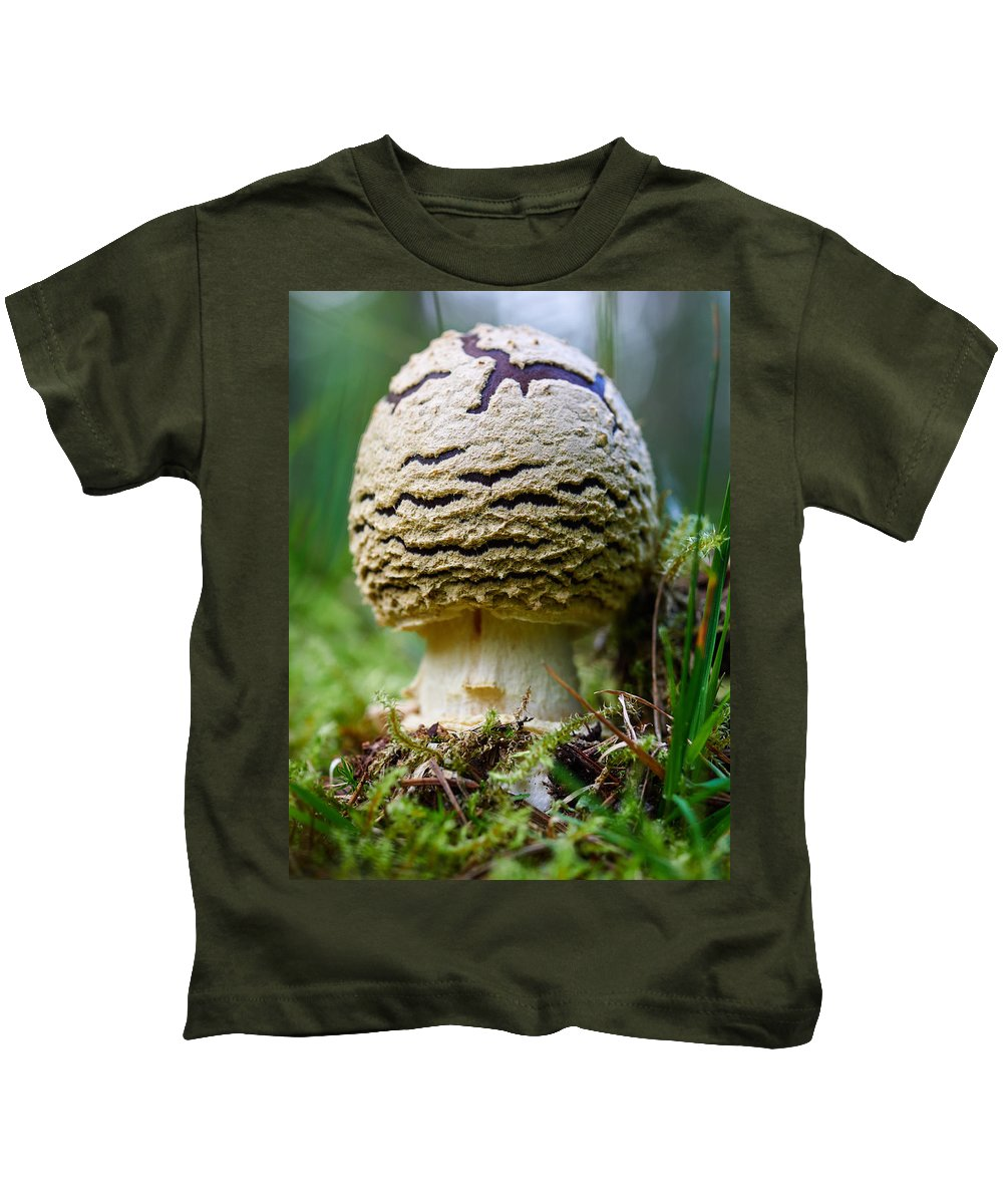 Finland Kids T-Shirt featuring the photograph King Of Sweden Amanita by Jouko Lehto