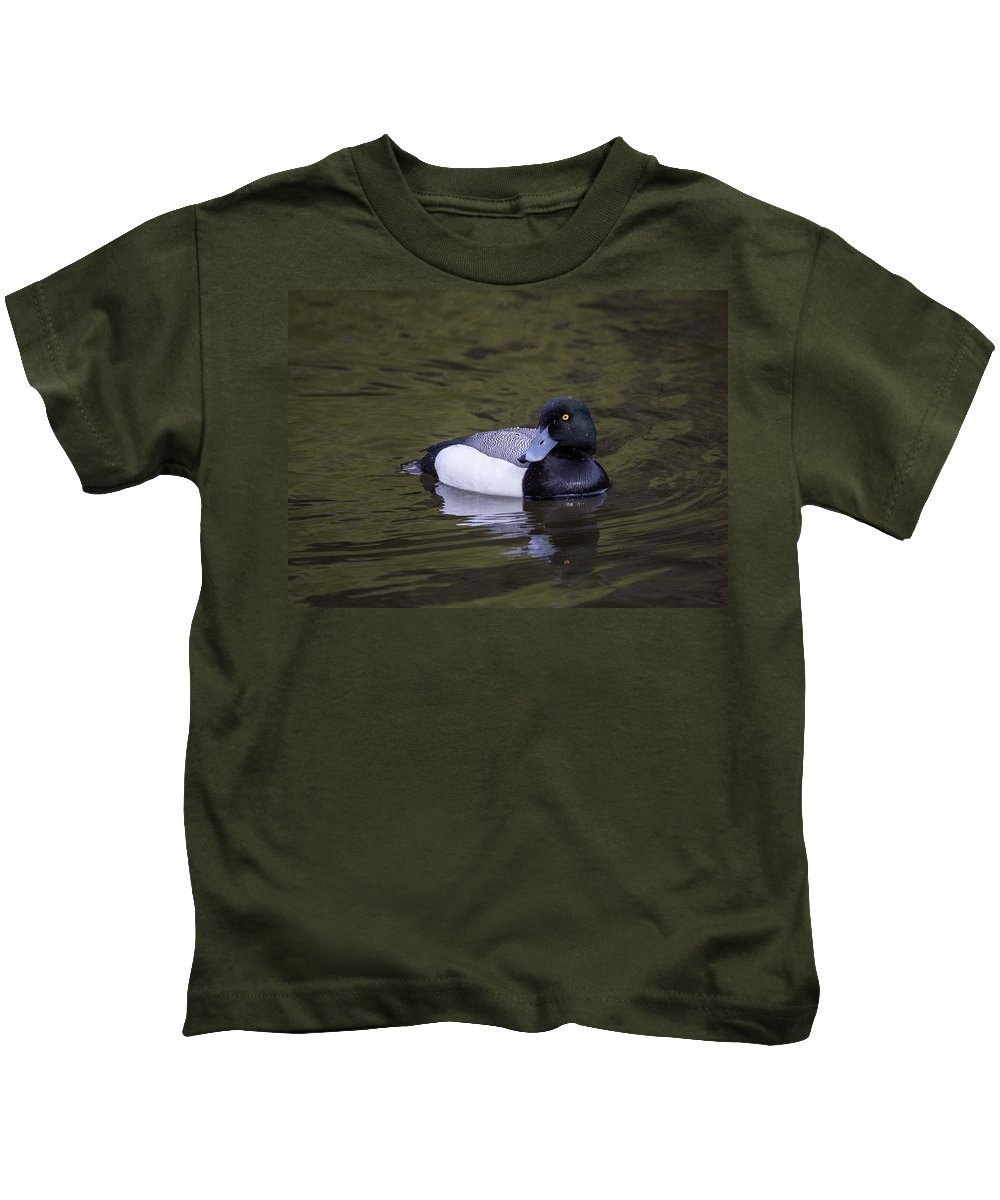 Doug Lloyd Kids T-Shirt featuring the photograph Lesser Scaup by Doug Lloyd