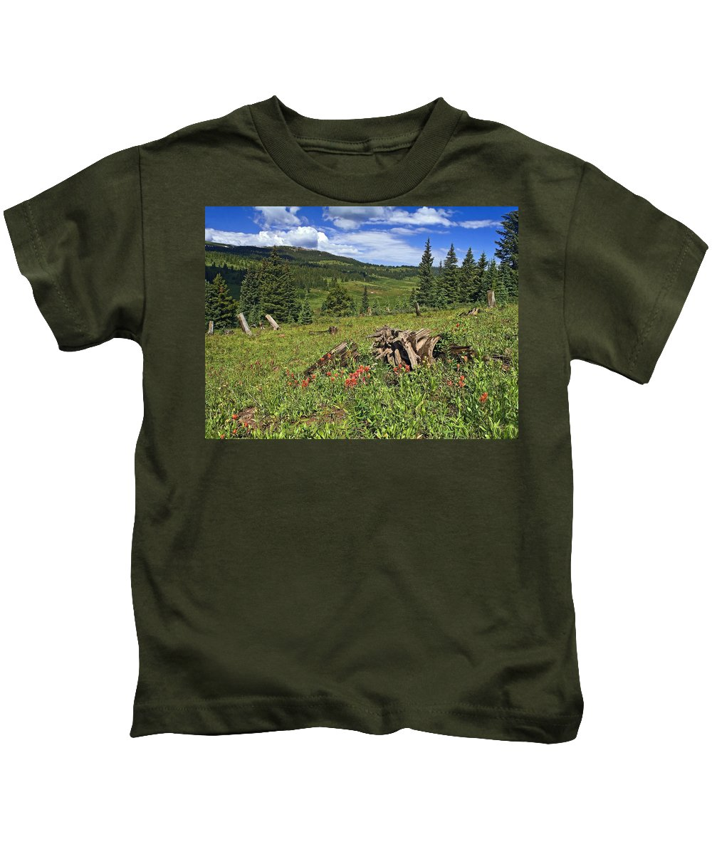 Mountain Meadow Scene Kids T-Shirt featuring the photograph Mountain Meadow by Sally Weigand
