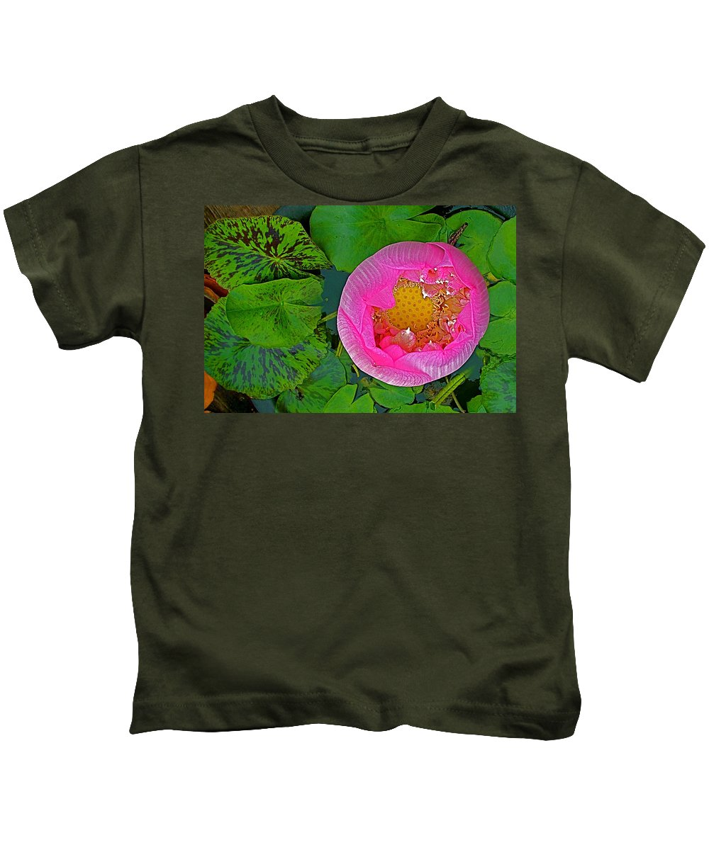 Pink Lotus In Backyard Of Home In Bangkok Kids T-Shirt featuring the photograph Pink Lotus In Backyard Of Home In Bangkok-thailand. by Ruth Hager