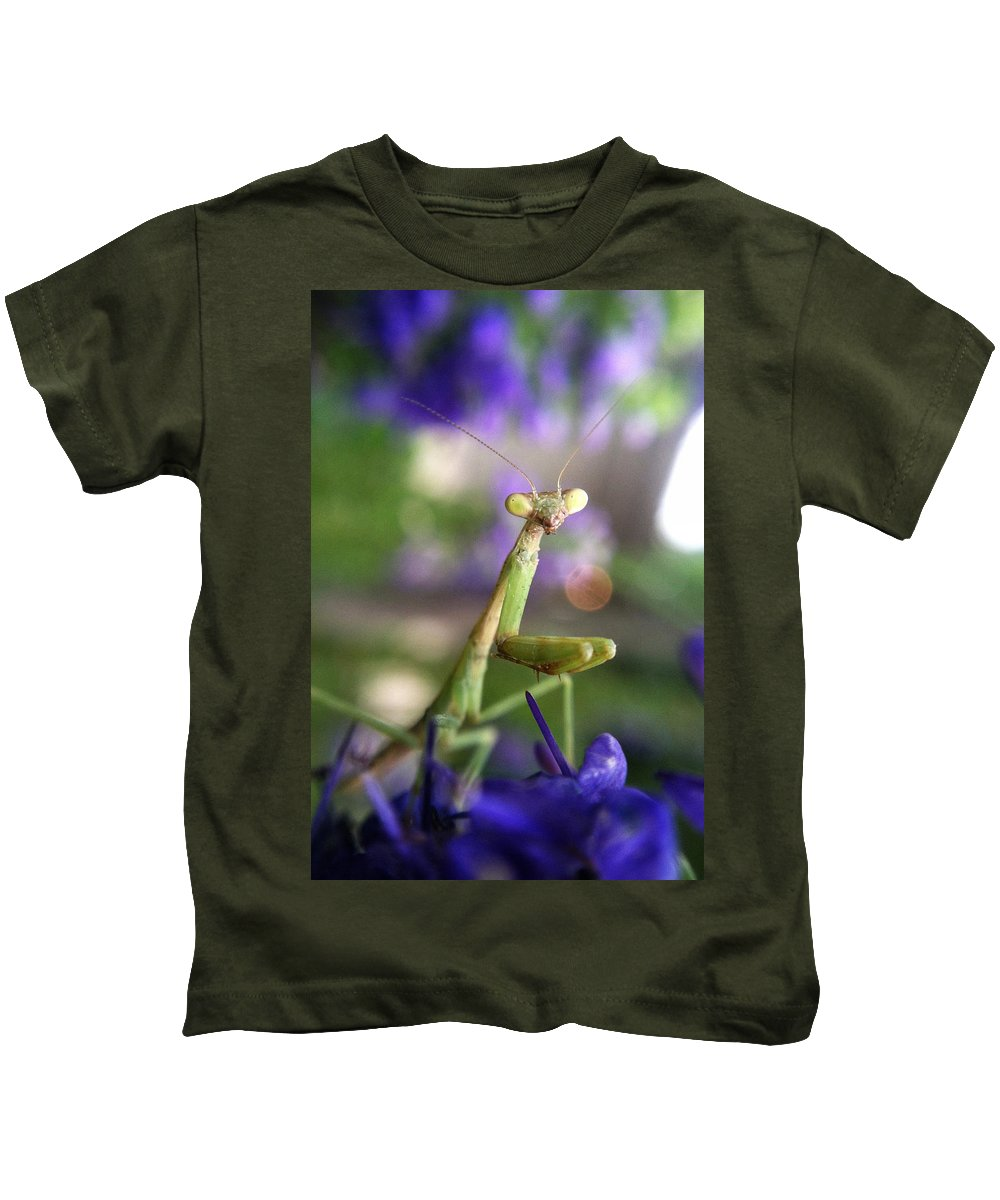 Praying Mantis Kids T-Shirt featuring the photograph Praying Mantis by Stacy Egnor