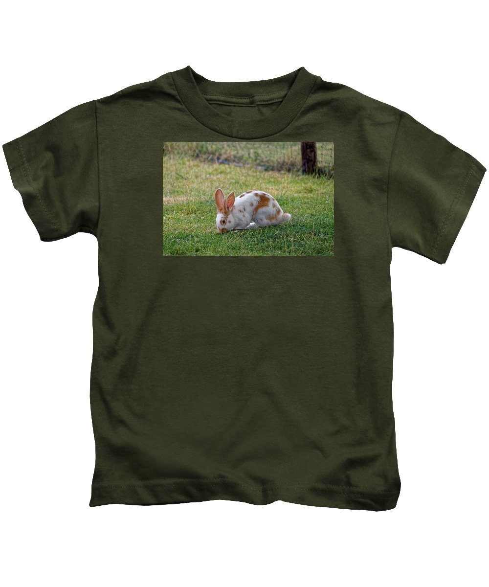 Rabbit Kids T-Shirt featuring the photograph Rabbit by FL collection