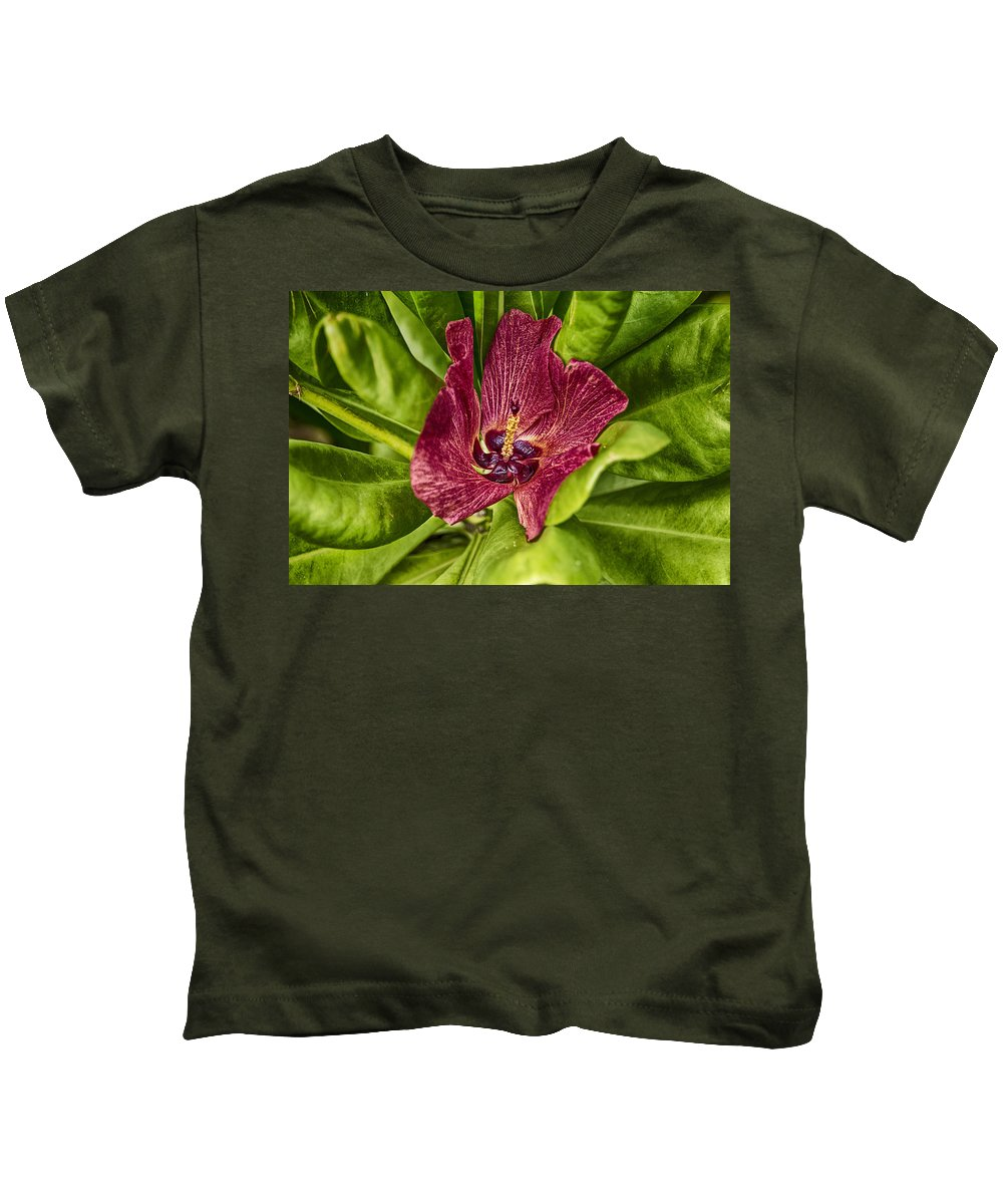 Red Kids T-Shirt featuring the photograph Red Tropical Tree Flower by Douglas Barnard