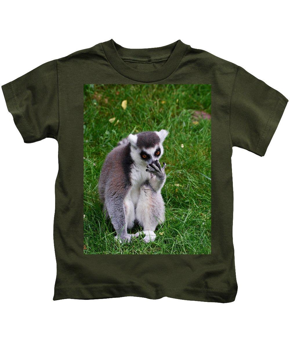 Alankomaat Kids T-Shirt featuring the photograph Ring-tailed Lemur by Jouko Lehto