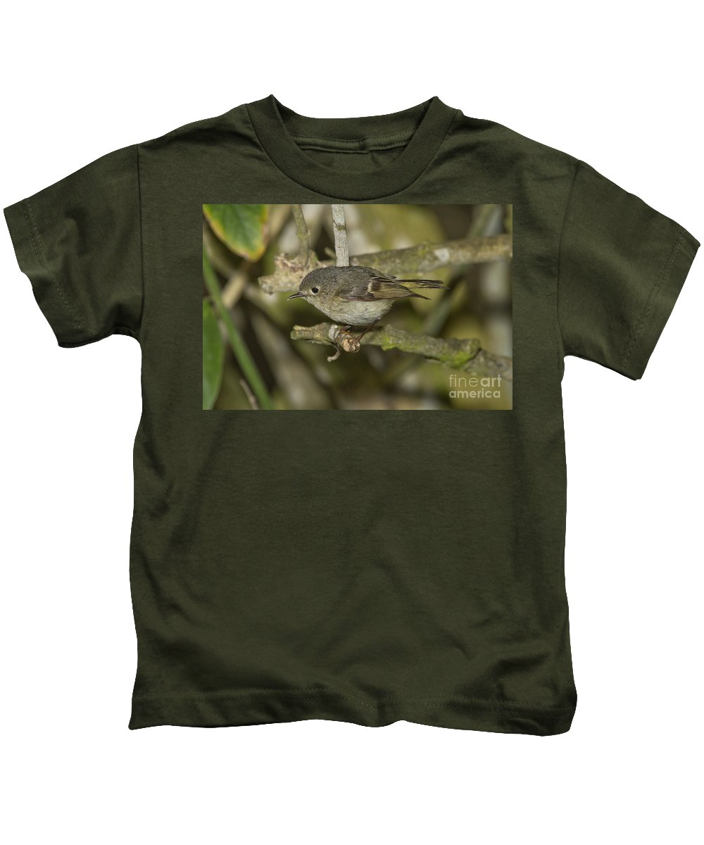 Ruby-crowned Kinglet Kids T-Shirt featuring the photograph Ruby-crowned Kinglet by Anthony Mercieca