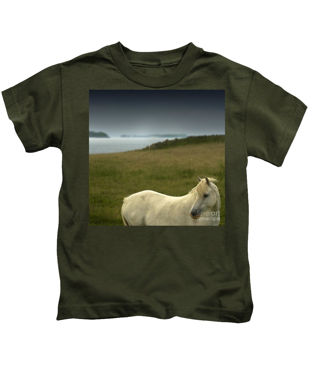 Welsh Pony Kids T-Shirt featuring the photograph The Welsh Pony by Angel Ciesniarska
