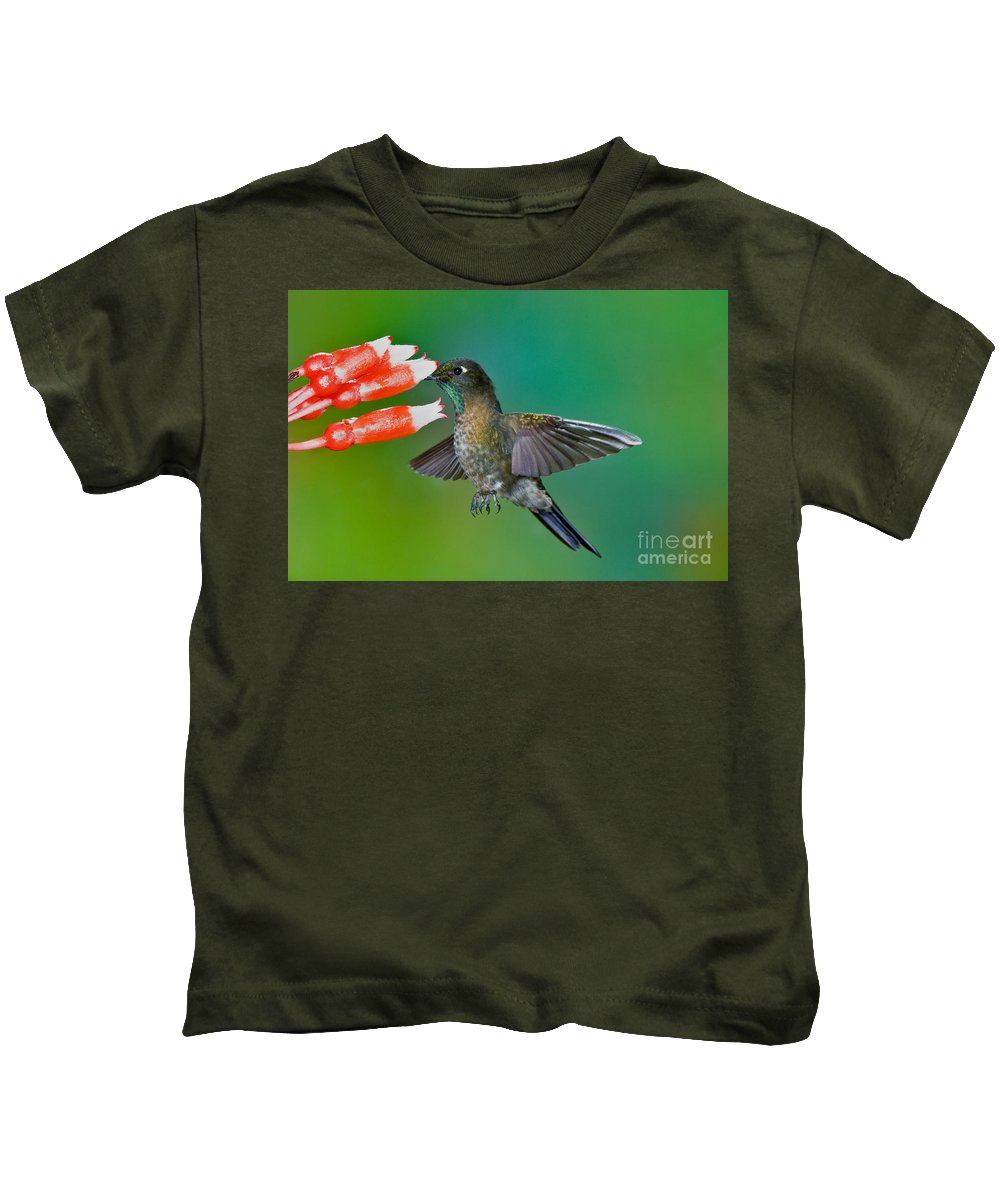 Animal Kids T-Shirt featuring the photograph Tyrian Metaltail by Anthony Mercieca