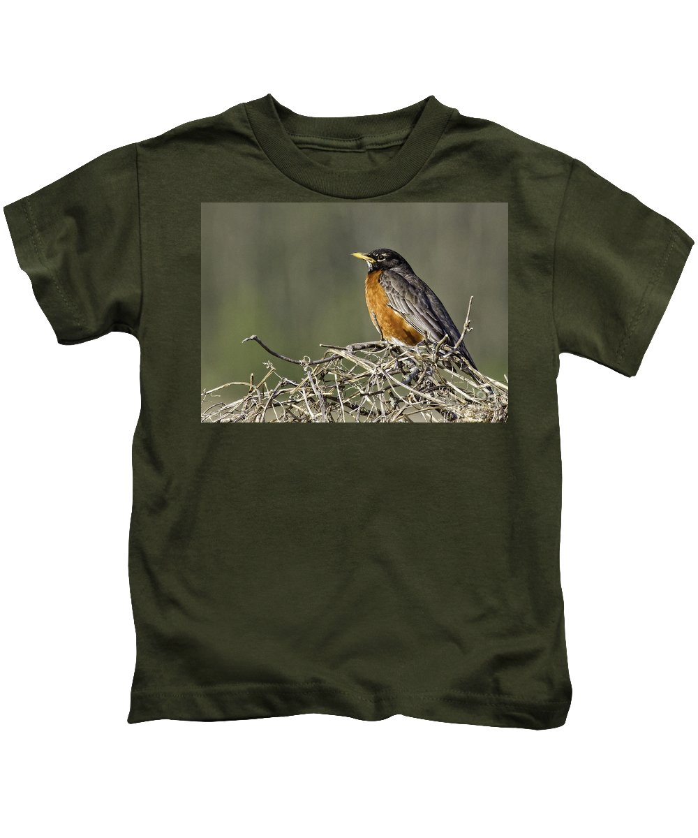 Songbird Kids T-Shirt featuring the photograph Watchful Eye by Jan Killian