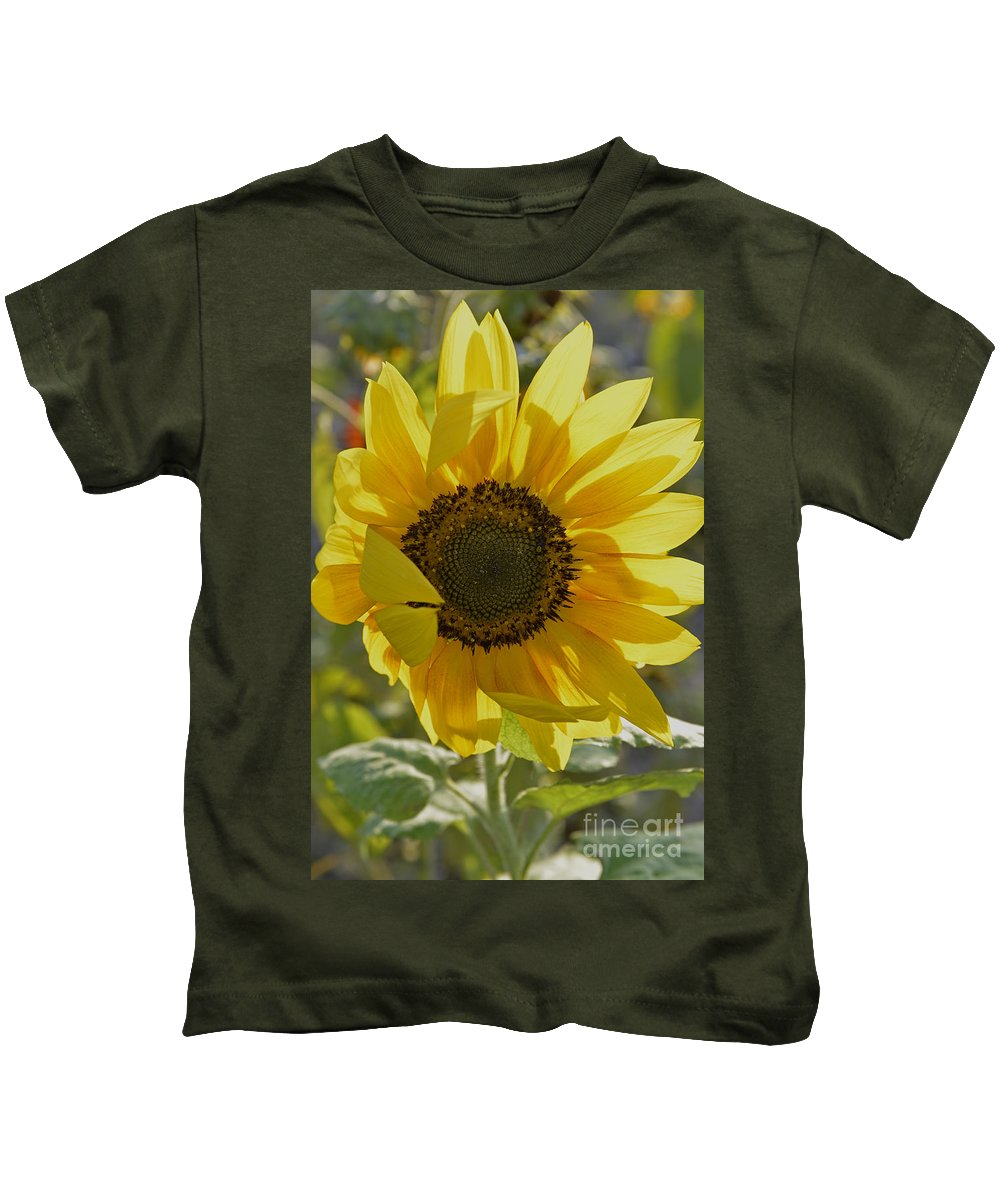 Wildflowers Kids T-Shirt featuring the photograph Yellow Sunflower by Roy Thoman