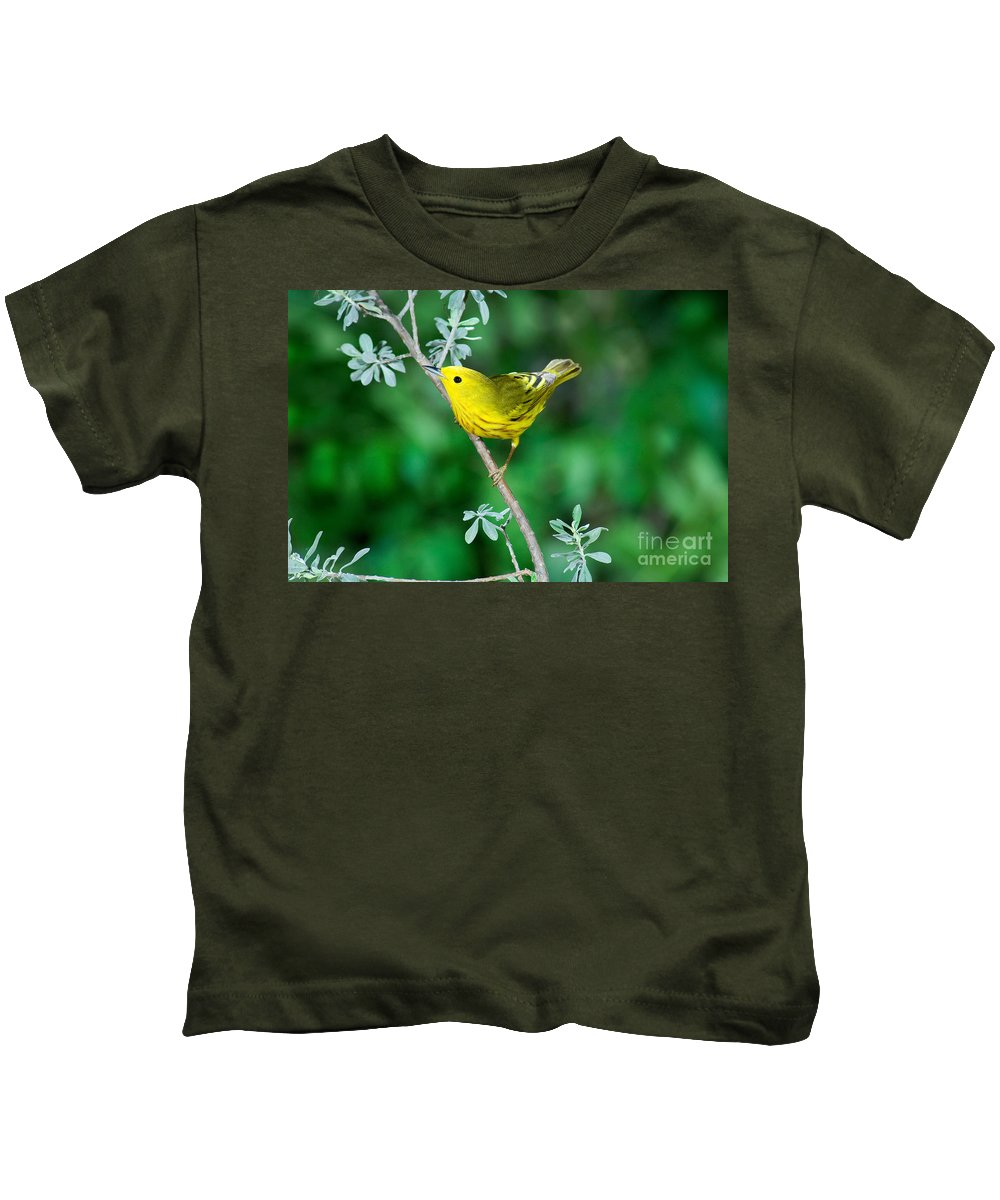 Fauna Kids T-Shirt featuring the photograph Yellow Warbler by Anthony Mercieca
