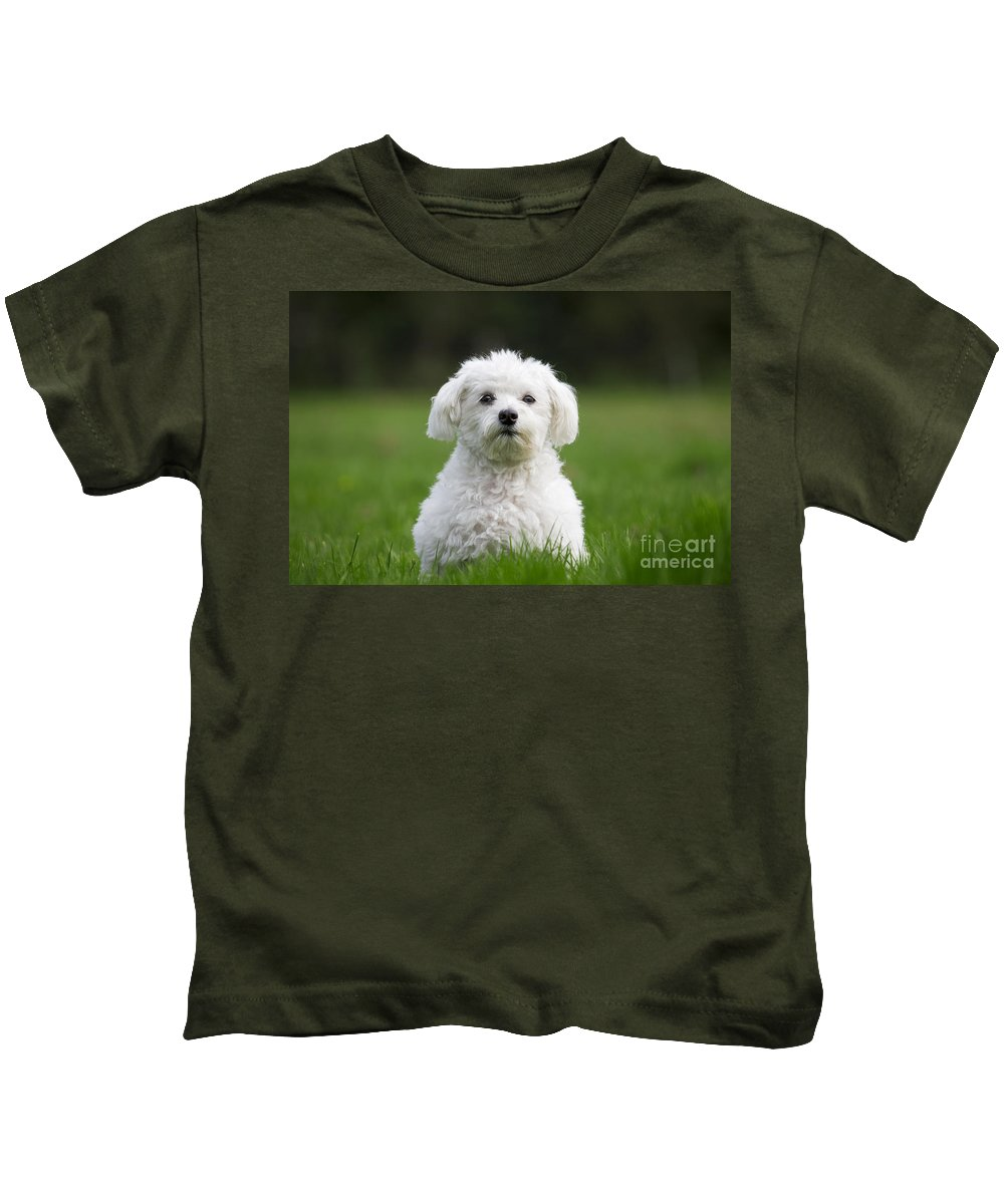 Maltezer Kids T-Shirt featuring the photograph 110506p113 by Arterra Picture Library
