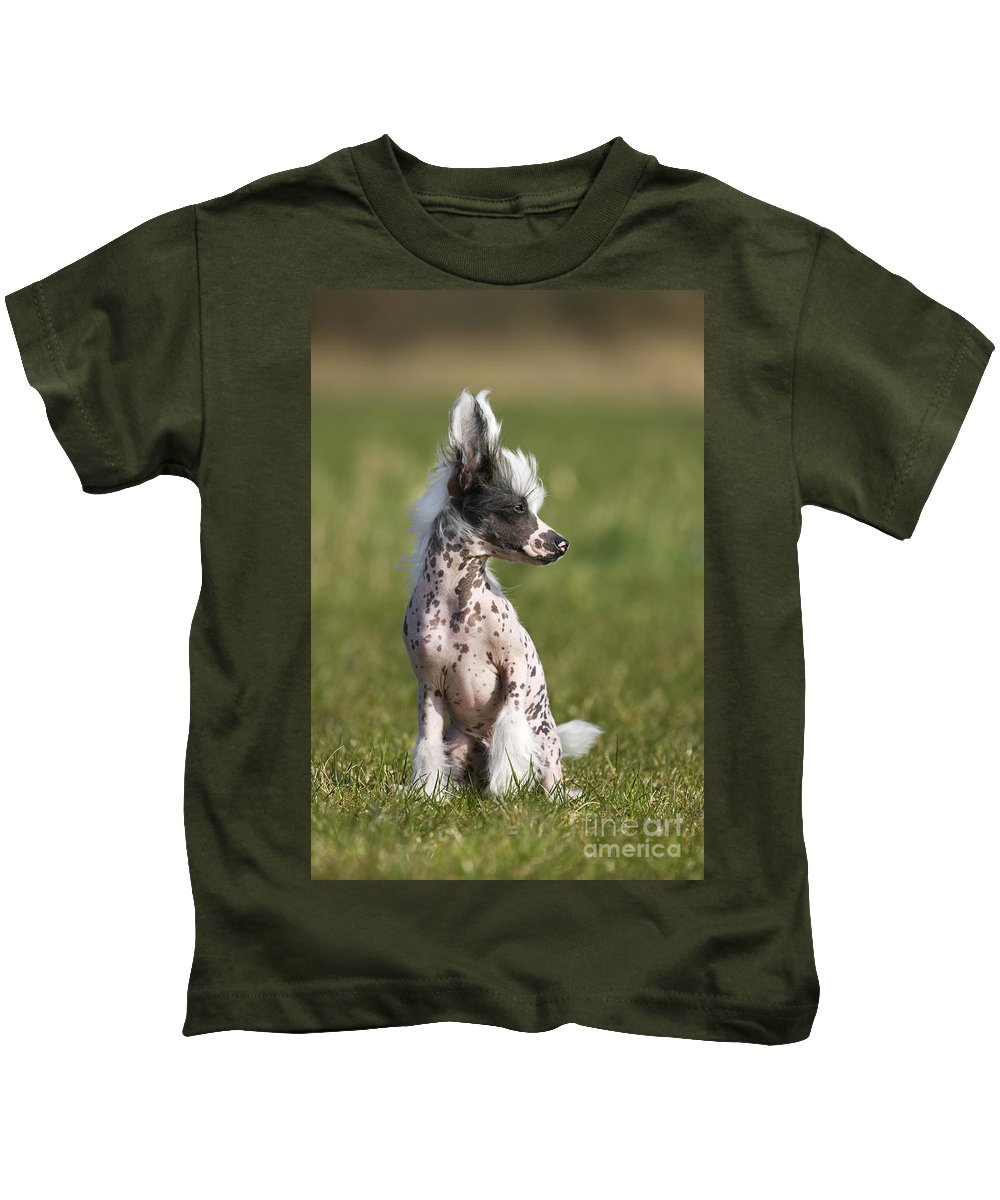 Mammal Kids T-Shirt featuring the photograph 110506p176 by Arterra Picture Library